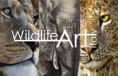 Wildlife Art Italy